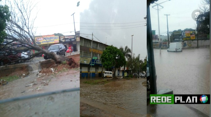 Forte chuva provoca alagamentos e derruba árvores em Plan-GO | Rede Plan