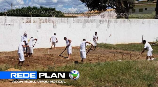 Presidiários constroem horta na cadeia de Planaltina-GO | RP