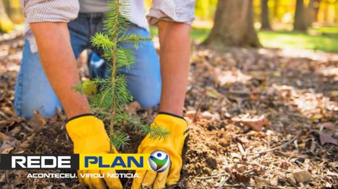 I Plantio global acontece nesse domingo em Planaltina-GO – Venha plantar uma árvore!   RP
