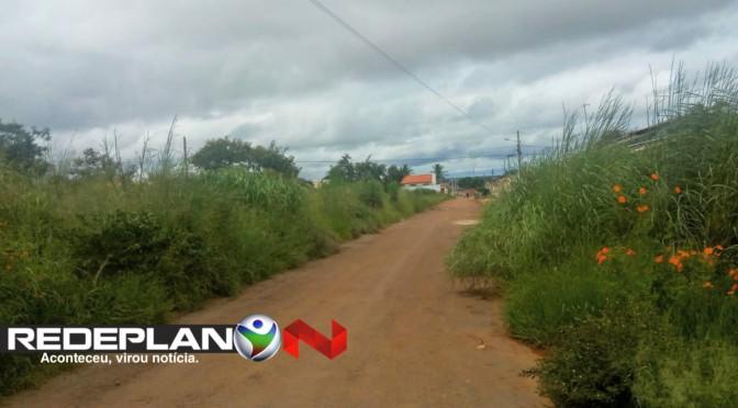 RUA DO TARZAN: Moradores da 15 norte pedem socorro devido mato alto   RP